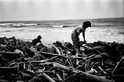 拉黑子於海邊撿拾漂流木,攝影/施合峰