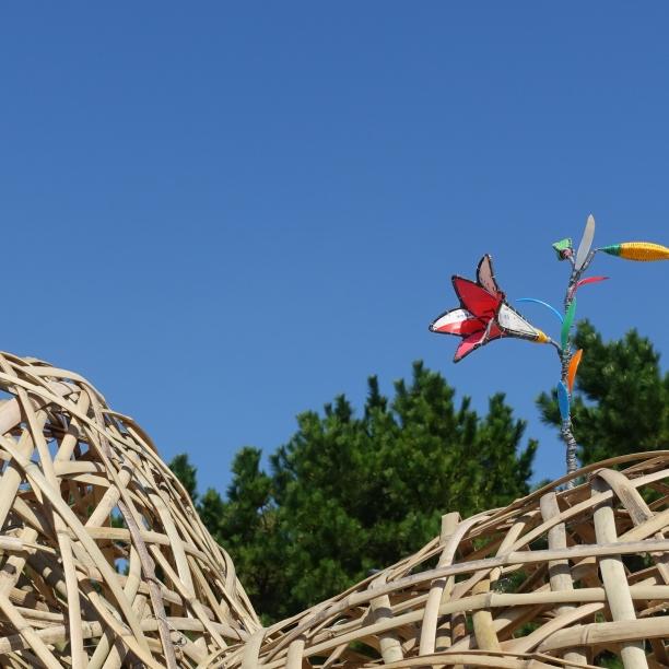 20190927拉黑子釜山雙年展作品-如果沙灘上有小島-小島上的花